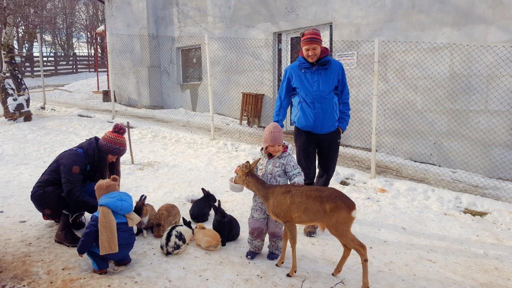 Aventuri in cinci Iarna la Moara de vant
