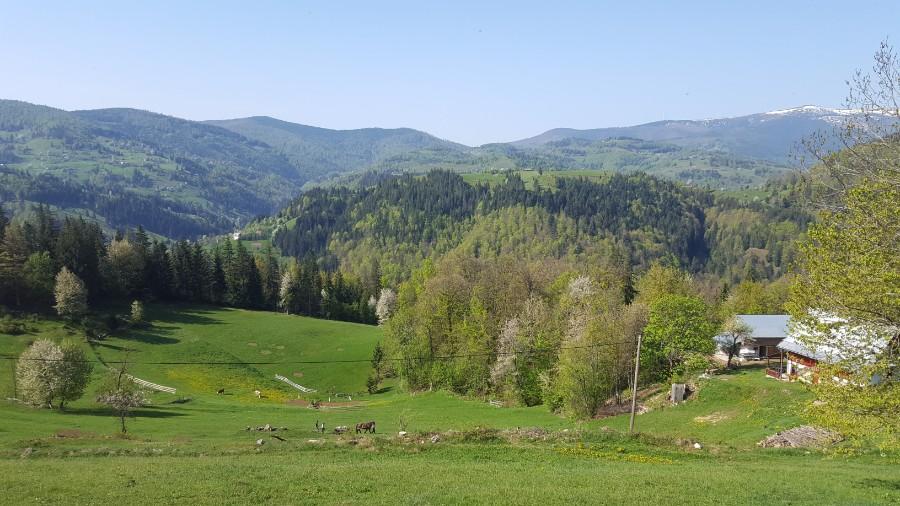 Aventuri in cinci Cu rulota la munte