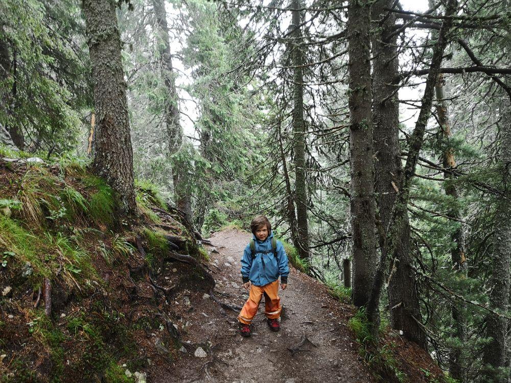 Aventuri in cinci Retezat Lacul Bucura cu copiii